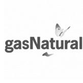 gasnaturali
